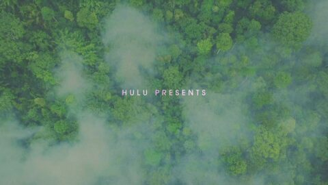 Image from A Hulu Original Nine Perfect Strangers by Antibody.